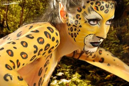 leopard13
